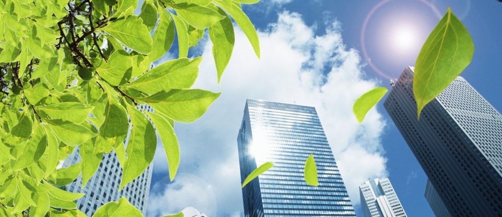 green-building-cleaning